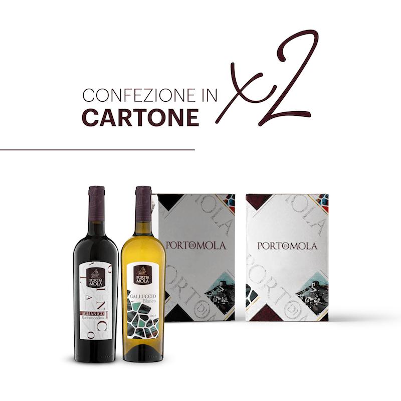 Scopri La Nostra Box In Cartone Componibile Da 2 Bottiglie